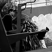 """APUNTES SOBRE MI VIDA: LA PASTORA I - 2009/10<br /> Photography by Aaron Sosa<br /> Aron Deyvid Sosa con sus amigos """"Graffers"""".<br /> La Pastora, Caracas - Venezuela 2009<br /> (Copyright © Aaron Sosa)"""