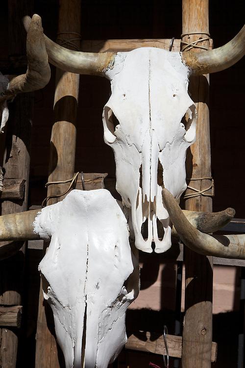 Cattle skull bones outside a gallery in Santa Fe, New Mexico.