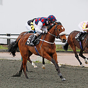 Arabian Flight and K T O'Neill winning the 2.30 race
