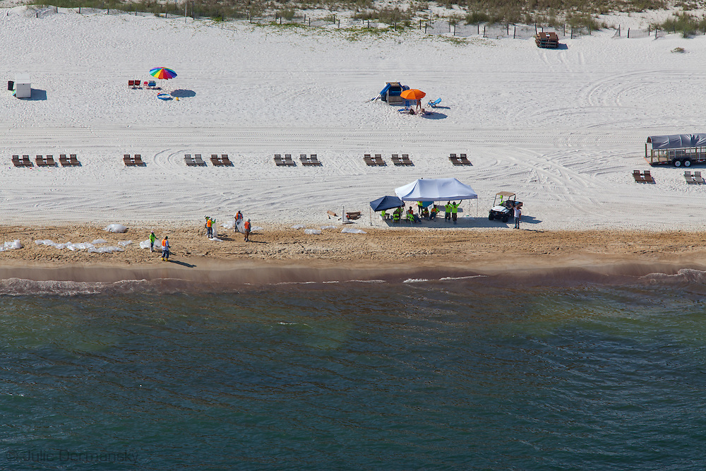6-10-2010,  A clean up crew cleans Orange Beach Alabama as BP oil washes on shore.