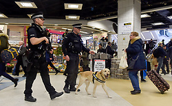 © London News Pictures. 24/03/2016. London, UK. Police sniffer dogs and armed police officers patrol Liverpool Street Station during rush hour, just days after the Belgian capital was hit by a terrorist attack. Photo credit : Hannah McKay/LNP