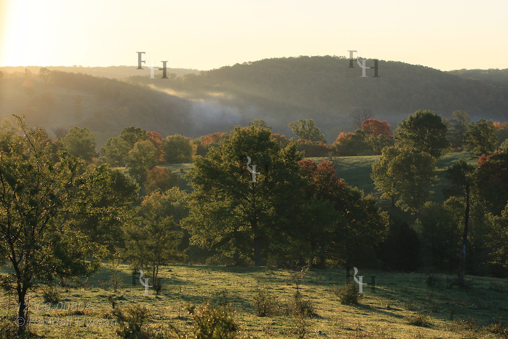 Patches of fog lift from pasture and woodlands at sunrise on an Ozark farm near Viburnum, Missouri.