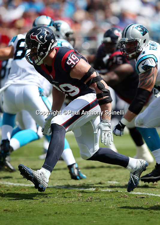 Houston Texans defensive end J.J. Watt (99) rushes the quarterback during the 2015 NFL week 2 regular season football game against the Carolina Panthers on Sunday, Sept. 20, 2015 in Charlotte, N.C. The Panthers won the game 24-17. (©Paul Anthony Spinelli)
