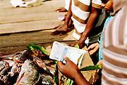In Oost Afrika noemen ze het Victoria Nyanza; Lake Victoria, het grootste zoetwatermeer van Afrika. Het behoort tot de Great African Lakes en is de een na grootste zoetwaterbron op aarde. Het water komt binnen via regenval en duizenden kleine stromen. De rivier de Nijl zorgt voor de grootste uitstroom, het water van Lake Victoria is vitaal voor deze rivier. Lake Victoria ligt in Oost Afrika, omringt door Oeganda, Kenia, Tanzania.<br /> De Nile Perche in de afgelopen decennia economische van belang is geweest voor Oost Afrikaanse landen rondom Lake Victoria (voor Oeganda staat de visexport zelfs op de 2e plaats, na koffie).Maar er zijn er grote gevolgen op ecologisch gebied. In de jaren &lsquo;80 nam de populatie van de vis explosief toe, de zogenaamde Nile perch 'boom'. Het veroorzaakte een verstoring van het ecologische systeem in het zoetwatermeer door een verandering van de voedselketen. Door het eetpatroon van de grote Nile perche zijn kleinere vissen en algsoorten verdwenen. De unieke samenstelling van het waterleven in Lake Victoria is door toedoen van het uitzetten van de Nile Perche in de laatste decennia verloren gegaan.<br /> Niet alleen is er verandering opgetreden in het ecologische systeem. Ook de tradities van de kleine vissers rondom Lake Victoria is veranderd. Voor 1950 waren de vissers voornamelijk vrouwen uit lokale dorpen. Zij viste in ondiep water op de kleinere Dagaa vis. Deze vis werd vooral gebruikt voor kippen en niet direct voor consumptie. Deze traditionele manier van visserij veranderde met de komst van de Nile Perche. Met de komst van commerci&euml;le&nbsp;visserij was de internationale vishandel in Oost Afrika een feit.