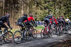 Back of the peloton with Ryder Hesjedal (CAN,195) of Trek - Segafredo at C&ocirc;te de Wanne with 95 km to go, the 102th edition of Li&egrave;ge-Bastogne-Li&egrave;ge race running 253 km from Li&egrave;ge to Li&egrave;ge, Belgium, 24 April 2016.<br /> Photo by Pim Nijland / PelotonPhotos.com<br /> <br /> All photos usage must carry mandatory copyright credit (&copy; Peloton Photos | Pim Nijland)