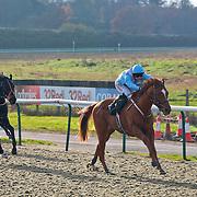 Examiner and Liam Jones winning the 12.30 race