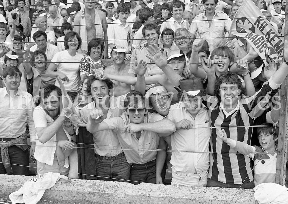 Supporters at the Leinster Hurling Final in Croke Park, 10/07/1983 (Part of the Independent Newspapers Ireland/NLI Collection).