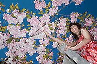 Girl on Ladder Under Blooming Cherry Tree