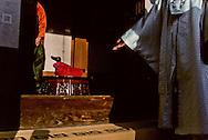 traditional wedding for modern couples. ///the mother waiting for her daughter la marié apporte un canard en signe de fécondité et de bonheur à la maison de la marié ///R00029/4    L2680  /  R00029  /  P0002956