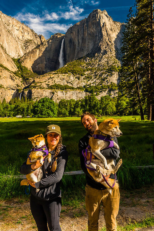 A young couple with their dogs in Yosemite Valley (with Upper Yosemite Fall behind), Yosemite National Park, California USA.