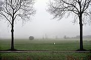 Nederland, Ubbergen, 11-12-2013Een eenzame zilverreiger zoekt in  een weiland in de mist naar voedsel.Foto: Flip Franssen/Hollandse Hoogte