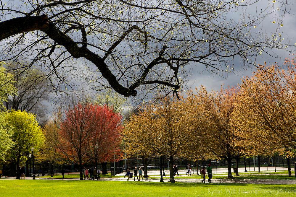 USA, Massachusetts, Boston. Boston Commons in springtime.