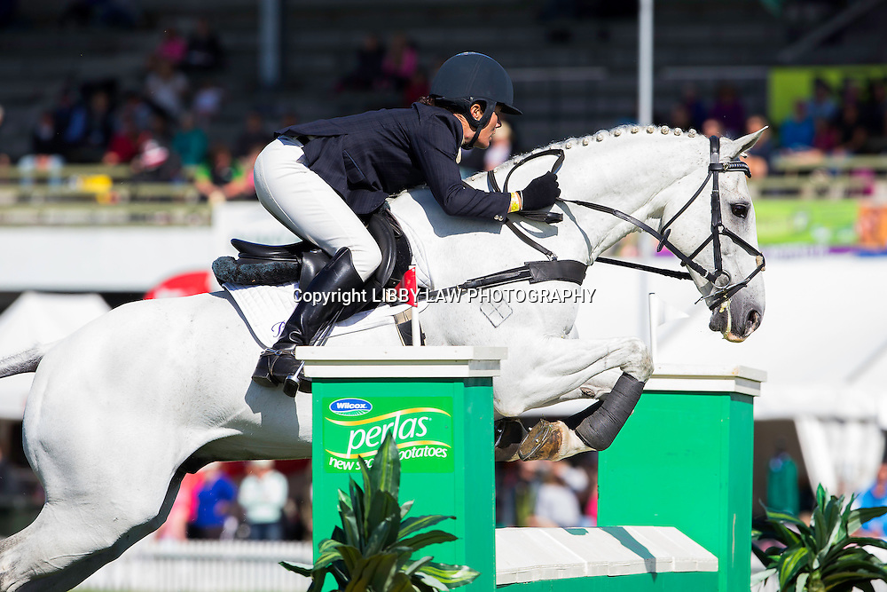 NZL-Emily Cammock (DAMBALA) CIC3* SHOWJUMPING: 2015 NZL-Farmlands Horse Of The Year Show, Hastings (Friday 20 March) CREDIT: Libby Law CREDIT: LIBBY LAW PHOTOGRAPHY