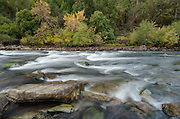 Fall color on the South Fork American River, near Lotus, California