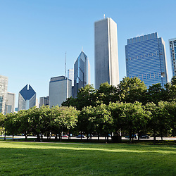 Picture of Grant Park and Chicago skyline with trees in front of  downtown city office buildings. Photo is high resolution and was taken in 2010.