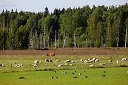 Södra Rönnäs Gård, Isnäs