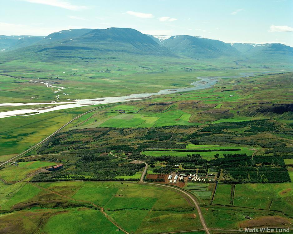 Kjarnaskógur skógræktarstöð séð til suðurs, Akureyri / Kjarnaskogur forrest viewing south in the outskirts of Akureyri.