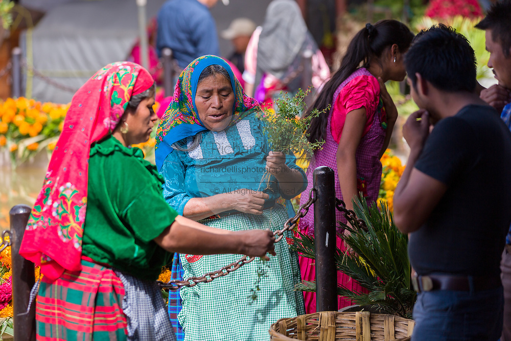 Zapotec woman selling fresh cut flowers at the Sunday market in Tlacolula de Matamoros, Mexico. The regional street market draws thousands of sellers and shoppers from throughout the Valles Centrales de Oaxaca.