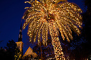 A palm tree decorated with christmas lights frames Citadel Square Baptist Church on historic Marion Square on December 19, 2011 in Charleston, South Carolina.