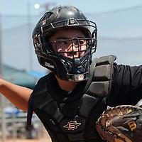 Baseball - 2013 Slug fest