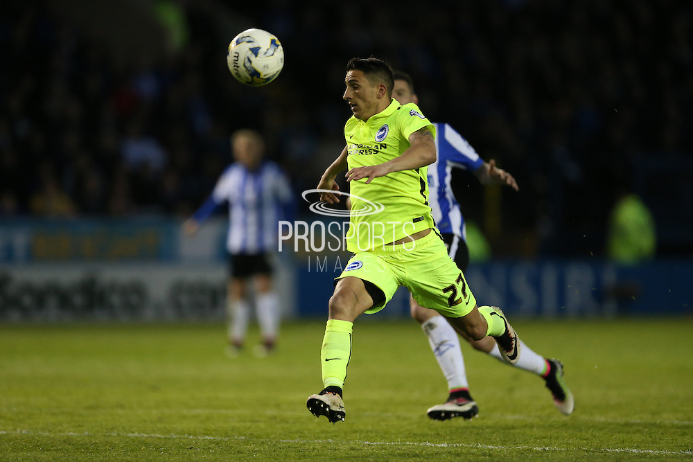 Brighton striker, Anthony Knockaert (27) during the Sky Bet Championship Play Off First Leg match between Sheffield Wednesday and Brighton and Hove Albion at Hillsborough, Sheffield, England on 13 May 2016.