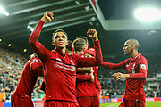 Trent Alexander-Arnold (#66) of Liverpool celebrates Liverpool's third goal (2-3) scored by Divock Origi (#27) of Liverpool during the Premier League match between Newcastle United and Liverpool at St. James's Park, Newcastle, England on 4 May 2019.