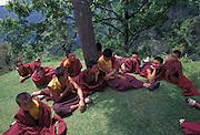 Buddhist novice monks relaxing and arm wrestling during a lunchbreak, Rumtek Monastery.