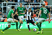 Miguel Almiron (#24) of Newcastle United hits a shot from outside the penalty area during the Premier League match between Newcastle United and Brighton and Hove Albion at St. James's Park, Newcastle, England on 21 September 2019.