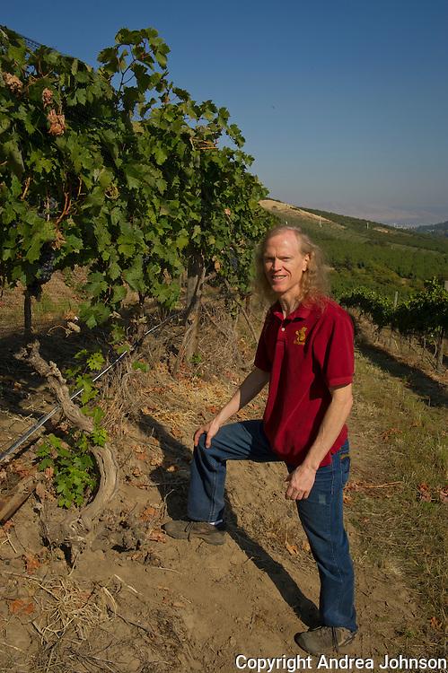 Peter  Rosback, winemaker for Sinean, walking through old vine zinfandel at the Pines vineyad, the Dalles, Oregon