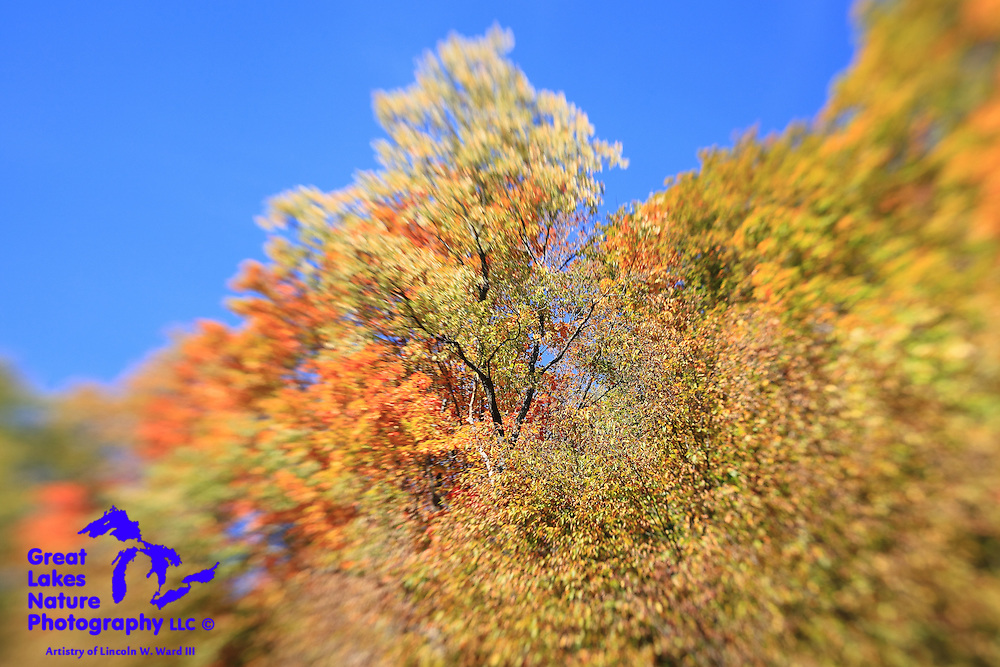 One of many images of Northern Michigan beauty from my week-long color tour in October 2013.
