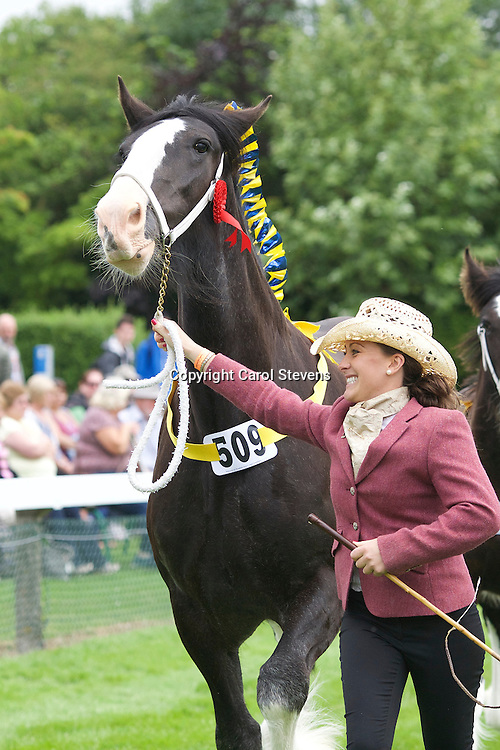 Abigail Wagstaff and her own Balck Mare  Rheidol Beauty with foal by Rheidol St George (sired by Wheatland King)<br /> <br /> Winner:  Brood Mare with own foal at foot Class<br /> <br /> Winner: Foal, produce of Mare in Brood Mare Class