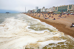 © Licensed to London News Pictures. 02/06/2018. Brighton, UK. A thick layer of Algae  covers the top of the sea in Brighton and Hove as the water is slowly warming up. Photo credit: Hugo Michiels/LNP