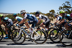 Tayler Wiles (USA) in the bunch at Santos Women's Tour Down Under 2019 - Stage 3, a 104.5 km road race from Nairne to Stirling, Australia on January 12, 2019. Photo by Sean Robinson/velofocus.com