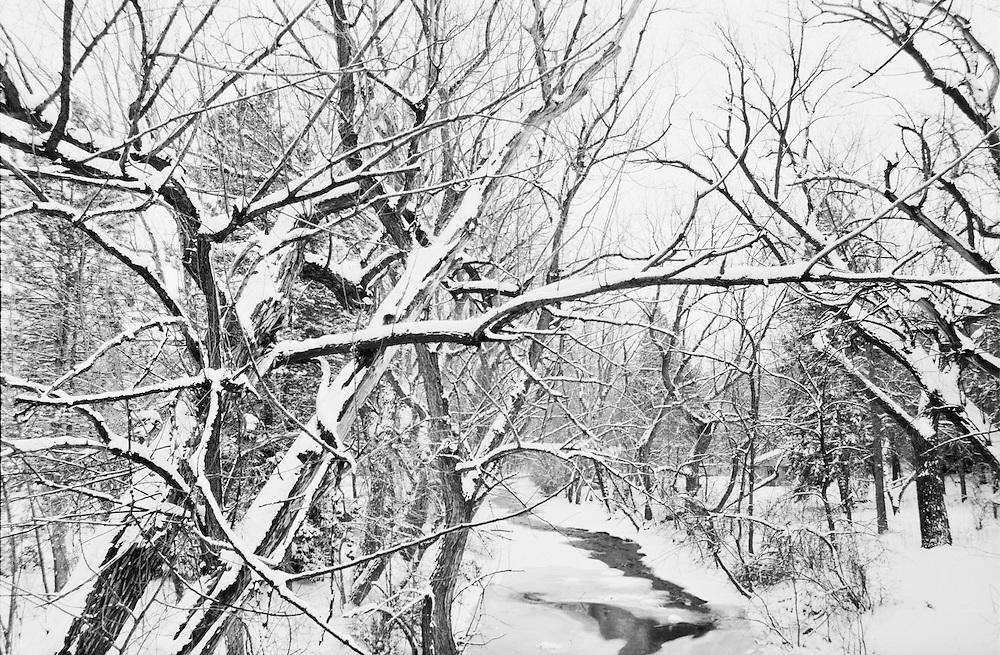 Boulder Creek frozen in winter in Boulder, Colorado.