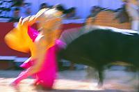 Bullfight at the Arles, Provence, France -  fetes de paques