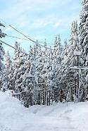 Winter / Snow