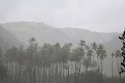 Heavy rainfall, Ua Huka, Marquesas Islands, French Polynesia<br />