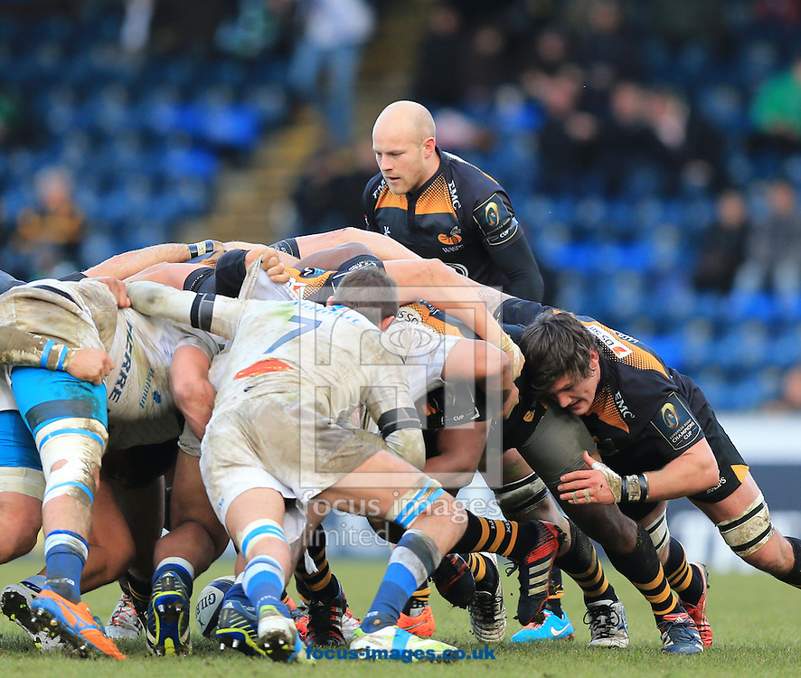Joe Simpson of Wasps during the European Rugby Champions Cup match at Adams Park, High Wycombe<br /> Picture by Michael Whitefoot/Focus Images Ltd 07969 898192<br /> 14Duncan Taylor of Saracens2014
