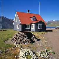 An old house at Isafjordur. Cast-iron pan and fireplace and white flowers.