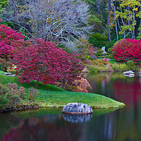 Reflections in small pond and garden in Acadia National Park Maine