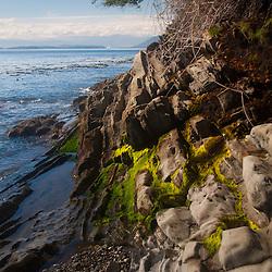 Shoreline and Boundary Pass, Stuart Island, Washington, US