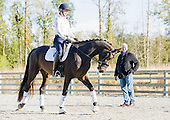 ReitenRight Equestrian Footing