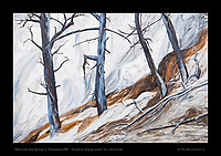 """Mammoth Hot Springs, Trees"" - Acrylic on display board, 24 x 36 inches.  © Tim McGuire 2013   Original is SOLD but there are prints available."