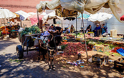 A donkey and loaded cart in a vegetable market in the medina, Marrakech, Morocco, North Africa<br /> <br /> (c) Andrew Wilson | Edinburgh Elite media