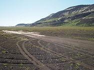 Mossy landscape near Laugarvatn Iceland 2017.