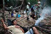 A worker at an illegal sassafras oil distillery who has just been caught is taken back to the army camp where he will spend the night being hand-cuffed in his hammock. He is a Vietnamese national sent to work here from Phnom Penh. From here he will be taken back to the provincial town for prosecution. Sassafras distilleries that produce the oil from rare Mreah Prew Phnom trees have become a real problem in this area but difficult to stop due to the remoteness of the forest and the high demand and profitablility as the oil can be used as an ingredient for the drug Ecstasy. The Cardamom Mountains and surrounding forests is the largest and most pristine area of intact forest in SE Asia. Covering an area of 2.5 million acres it became one of the last strong holds of a retreating Khmer Rouge. Their presence helped preserve the forest as no-one dared to venture inside. But with the Khmer Rouge gone, it faces new dangers from poachers, loggers and illegal drug factories. In charge of protecting this vast forest are a handful of rangers who's job it is to track down and arrest those who are helping to destroy this delicate habitat.