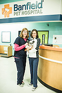 Custom photo-shoot for Heal Magazine at Banfield Pet Hospital, Longmont, CO.   Amazing team work and dedication to pet care.
