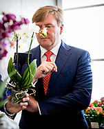 King Willem-Alexander of The Netherlands attends the 80th anniversary of Anthura specialized in Orchids and Anthurium in Bleiswijk, The Netherlands, 1 June 2018. Photo: ROBIN UTRECHT