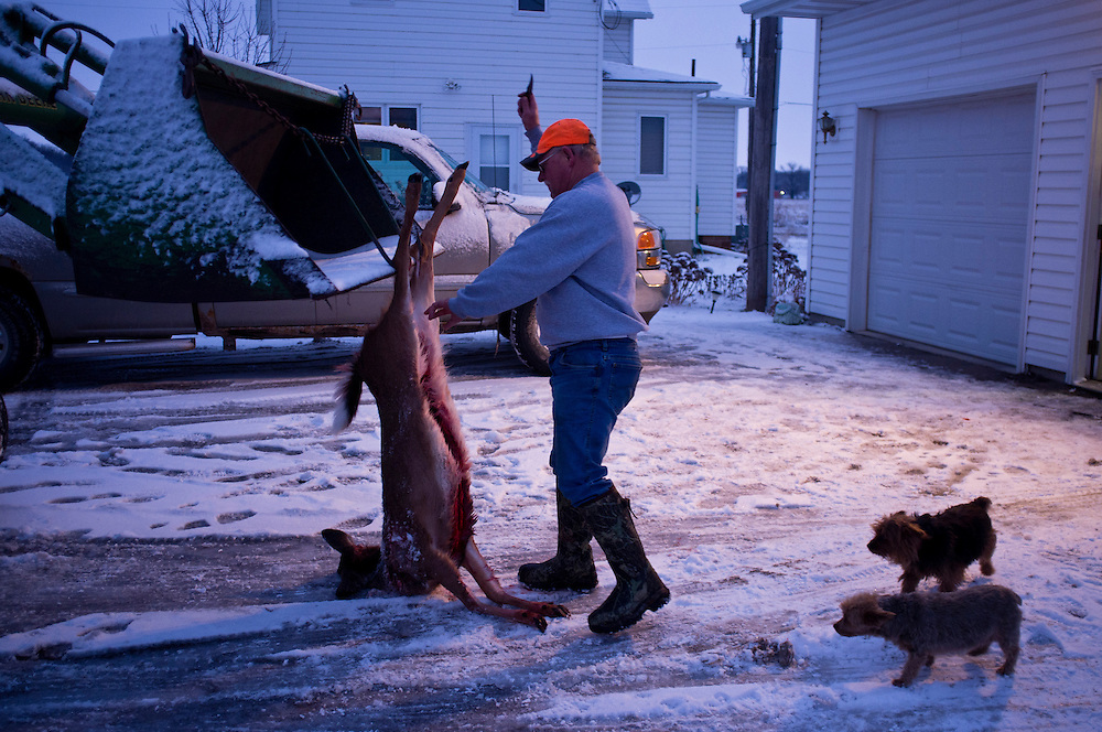 Mike Johnson skins a young buck killed on the opening weekend of deer hunting season on Sunday, December 4, 2011 in Webster City, IA.