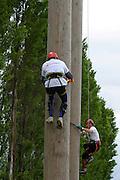 British Pole Climbing Championship at the Newark & Nottinghamshire County Show.